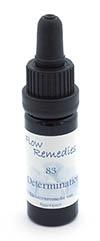 Flow Remedies crystal essence 83. Determination